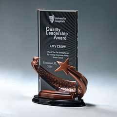Bronze Star Award w/ Ebony Background