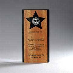 Ebony Lucite with Alder Wood Panel with Star Award