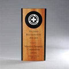 Ebony Lucite with Alder Wood Panel with Circle Award