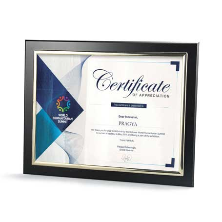 C4802* - Certificate Frame with Metallized Accent
