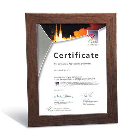 C4804 - Walnut Finish Certificate Frame