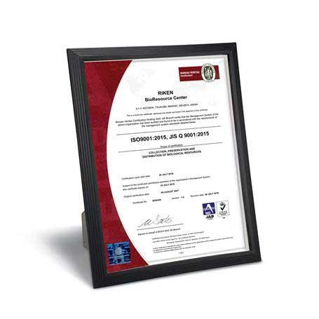 C4805 - Black Plastic Certificate Frame