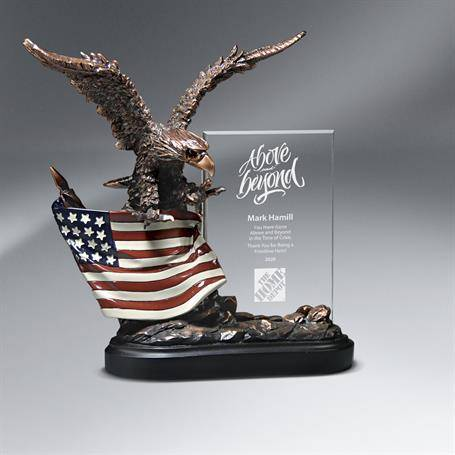 CD446 - Bronze Antique Resin Cast Eagle with Flag and Beveled Glass