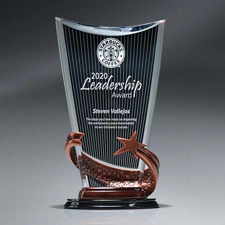 CD829 - Bronze Brilliance Star Arch Award with Ebony Background