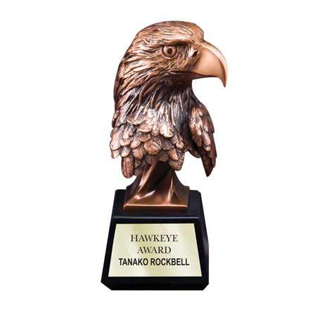 CM224B - Bronze Antique Resin Eagle Head - Medium
