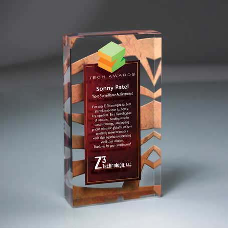 DCC0479 - Lucite Infusion Embedded Imprint