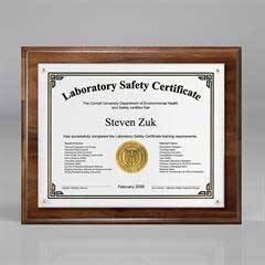 "Certificate/Overlay Plaque for 7"" x 5"" Insert"