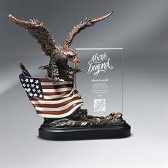 Bronze Antique Resin Cast Eagle with Flag and Beveled Glass